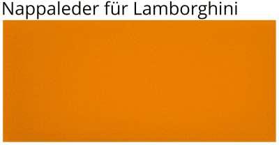 1904 arancia leonis